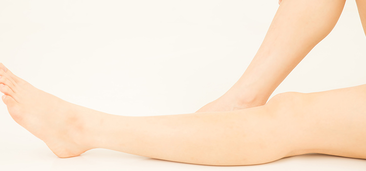 美脚モデルの美しい脚