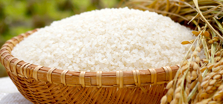 新潟名産の白米