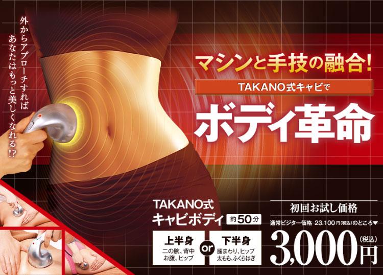 TAKANO式キャビボディ